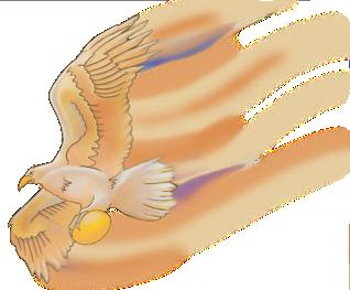 EagleC